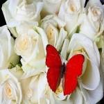 Amarre De Amor Con Flores Para Recuperar Tu Ex-Pareja